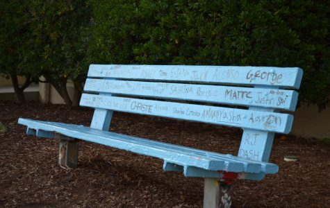 The Senior Bench sits proudly on the Senior Lawn, decorated with  all 128 seniors' names. PC: Amy Carlyle ('20)