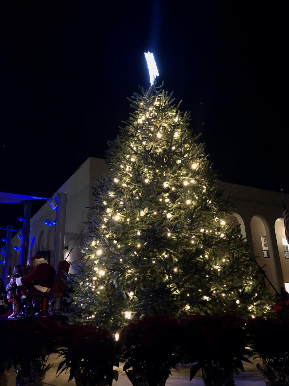 The Bishop's Christmas tree was lit on December 5th this year, appropriately after Thanksgiving.