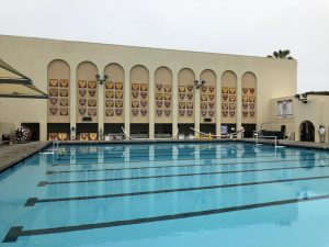 With 37 plaques recognizing Boys' accomplishments in the pool and 35 for the Girls', both genders contribute roughly equally to the School's success.